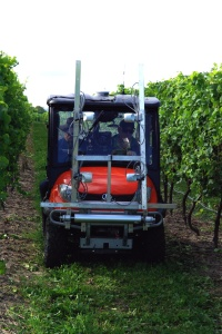 Practical Precision Vineyard